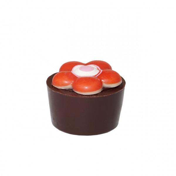 Praline Holunderblüten Töpfchen Rote Blume